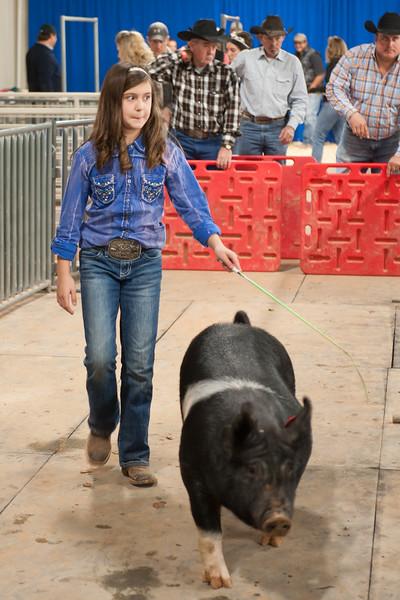 Hays County Show-9840.jpg