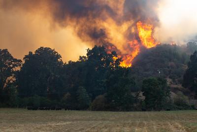 Mendocino Complex Fire - 8-3-18