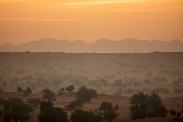 UAE 2018 Dubai Dessert Conservation Reserve