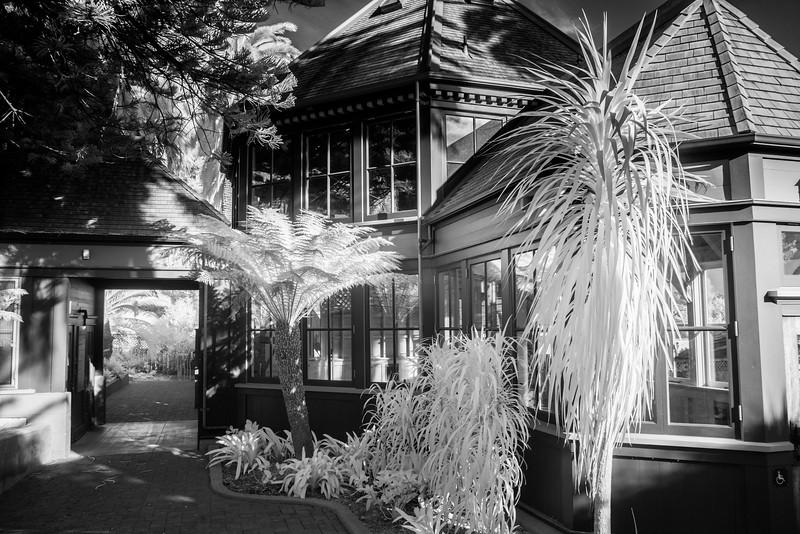 Infrared - Sunnyside Conservatory
