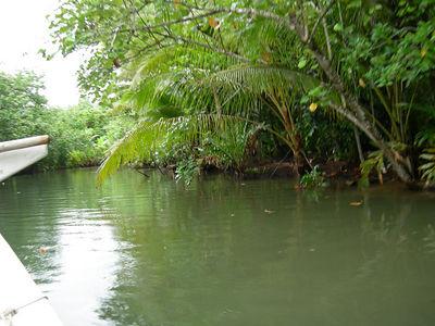 Raiatea, French Polynesia (1/21/2006)