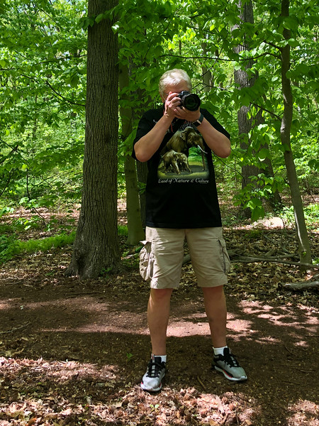 Lost in the woods. Walking safe in Alley Pond Park - May 16, 2020