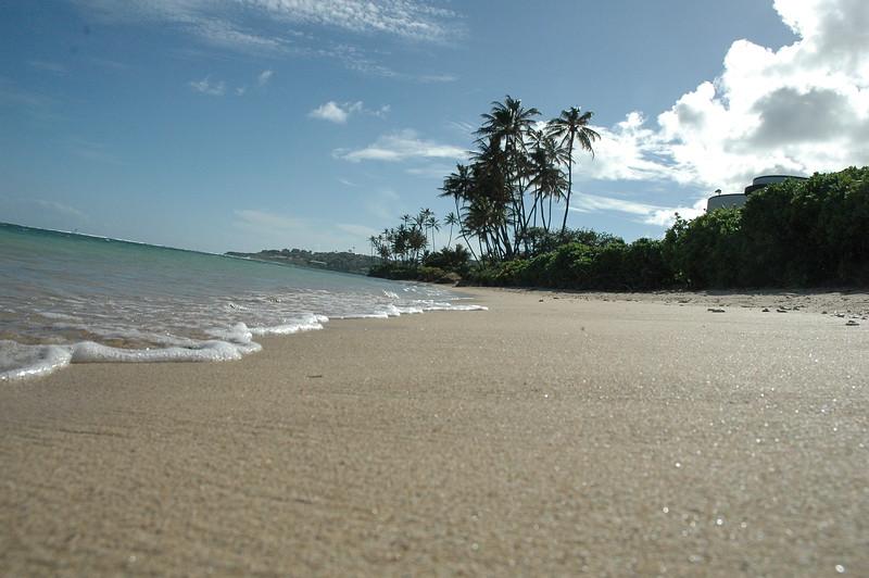Hawaii - Kahala Beach-99.JPG