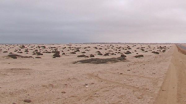 Cape Cross on the Skeleton Coast
