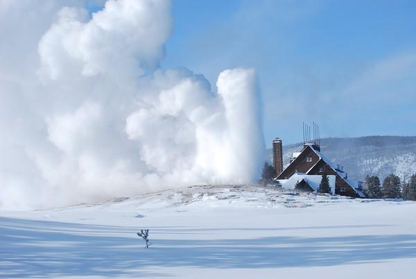Yellowstone Trip - Winter 2014