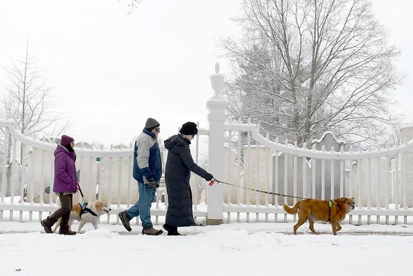 Winter Wonderland Monday - 010421