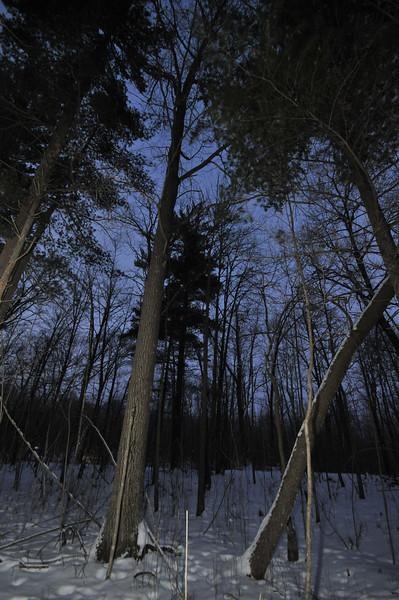 2012-12-29 2012 Christmas in Mora 099.JPG