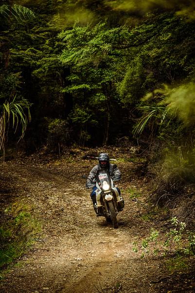 2019 KTM New Zealand Adventure Rallye (1339).jpg