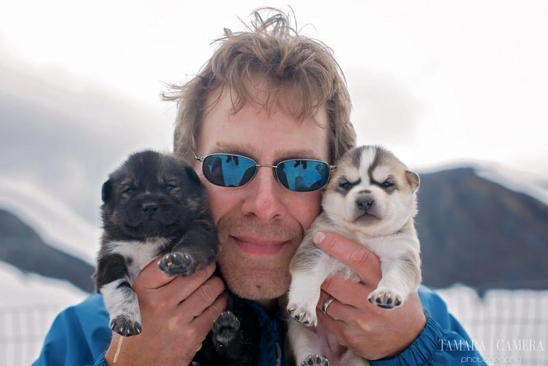 Puppies-3-2.jpg