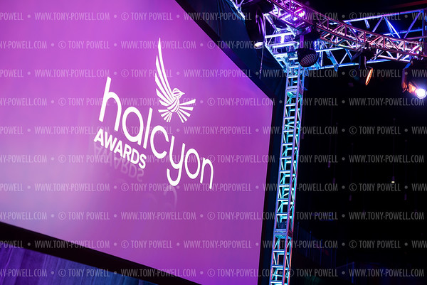 2019 Halcyon Awards