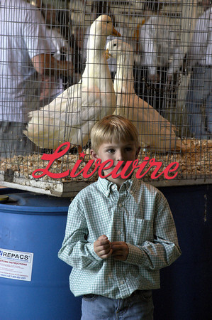 Poultry Show 2011