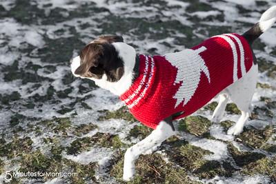 AJ Canada Sweater WEB