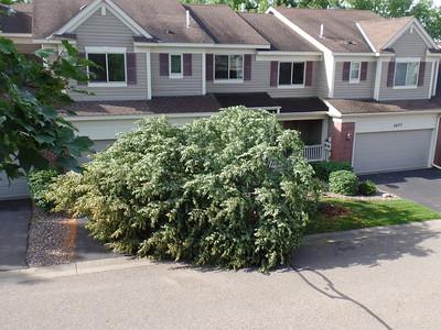 2016-07-05 - Wind Damage