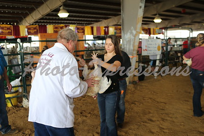 POULTRY SHOW Monday September 25