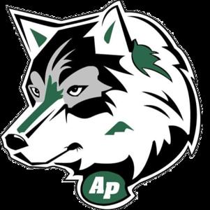 Allen Park Huskies - PeeWee AA (Bronze)