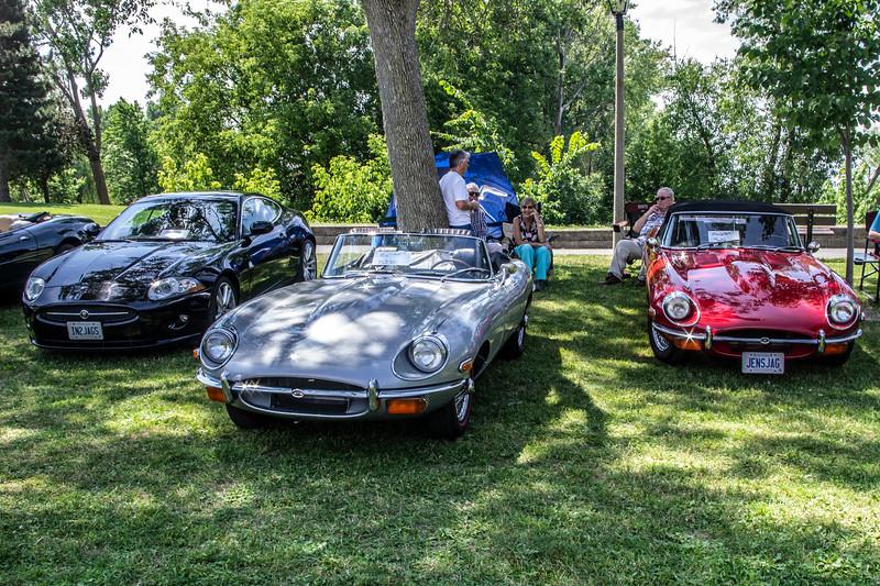 Jaguars at All British Car Day