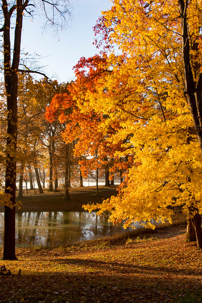 Fall-color-WingfootLakeSP-Nov11p.jpg