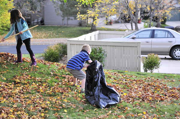 Kids Jumping in a pile of leaves