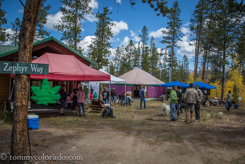 cannabiscup_tomfricke_160917-2246.jpg