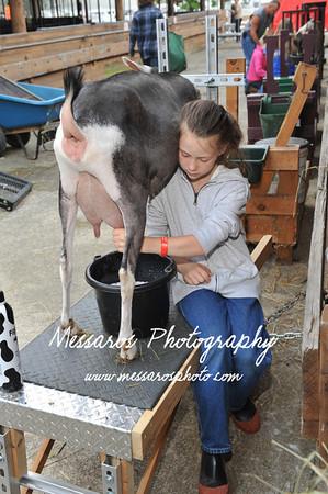 LC Fair 2013 - Monday