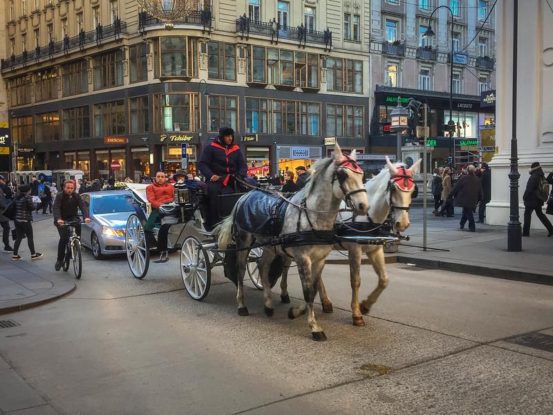 Vienna-45.jpg