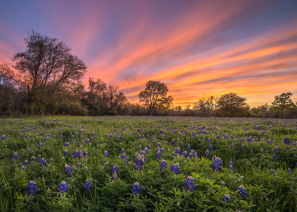 Hill Country Alliance Finalist Photos