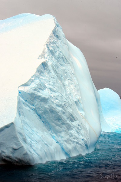 091203_iceberg_6956a.JPG