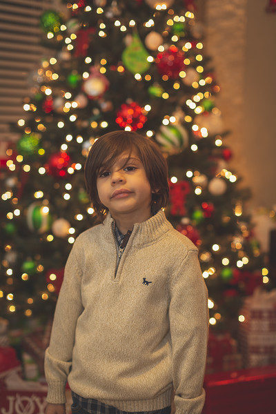 Gonzalez Christmas 2018 (42 of 105).jpg
