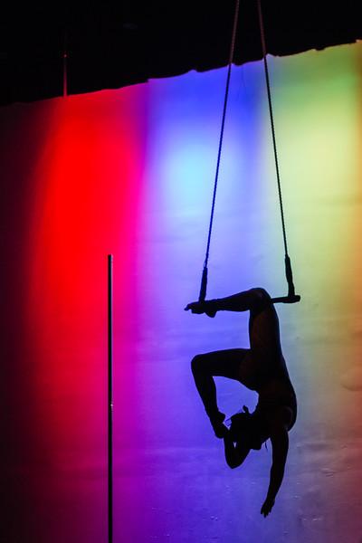 Kairos Circus Benefit-20150109-1718.jpg