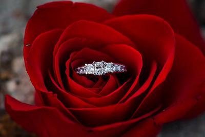 Tanya & Ilya Proposal