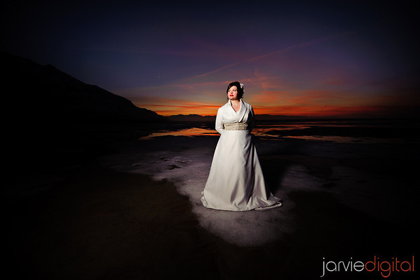 Bridals at the Great Salt Lake in Winter
