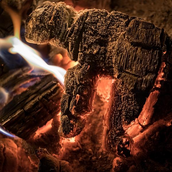20190814 Campfire-8.jpg