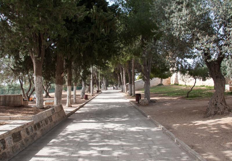 Israel_0758.jpg