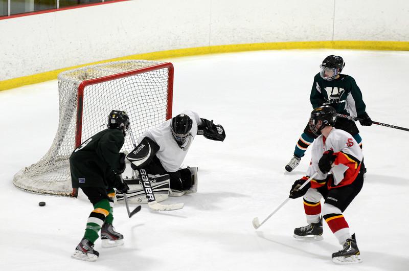 130223 Flames Hockey-178.JPG