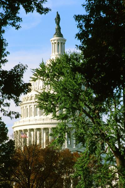 The Capital in Autumn