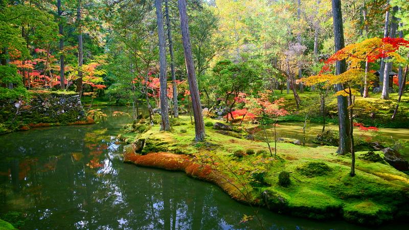 Koke-dera (Moss Temple)