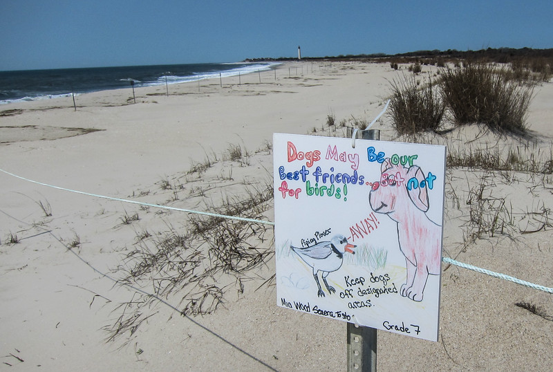Sign at Cape May Point State Park.