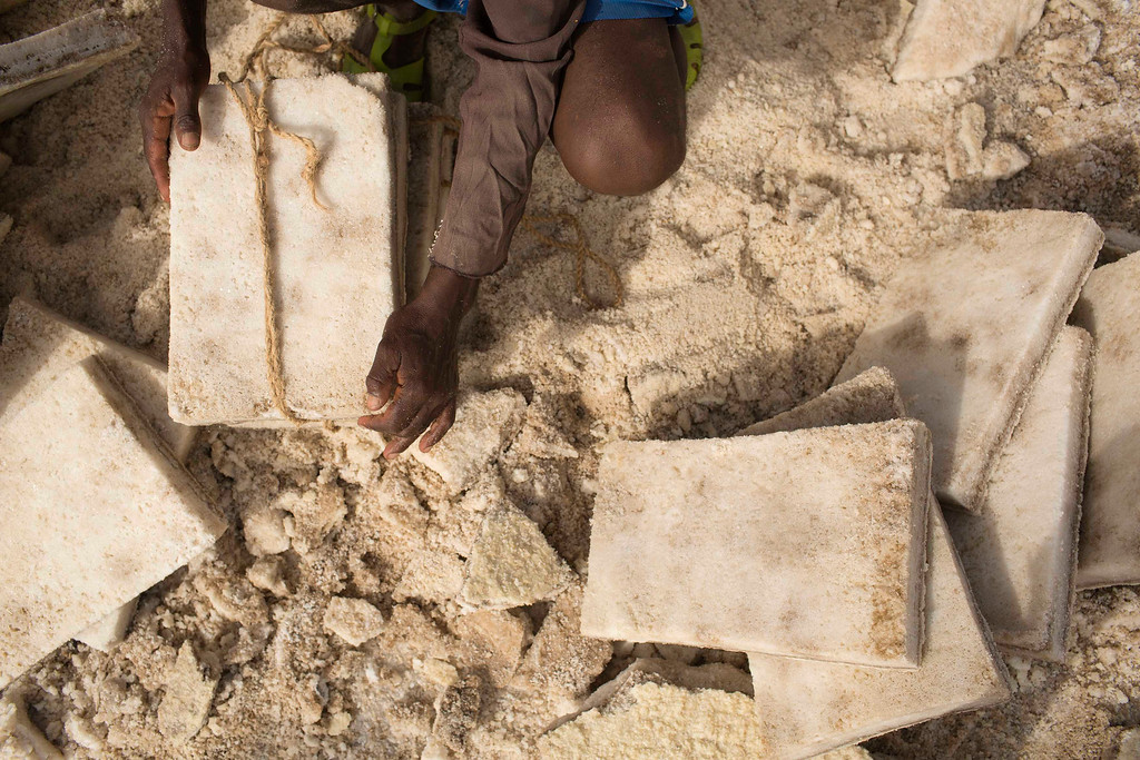 . A worker ties together slabs of salt extracted from the Danakil Depression in northern Ethiopia April 22, 2013. Once the caravan find a suitable place to mine salt, they extract, shape and pack as many salt slabs as possible before starting their two-day journey to the town of Berahile. The Danakil Depression in Ethiopia is one of the hottest and harshest environments on earth, with an average annual temperature of 94 degrees Fahrenheit (34.4 Celsius). For centuries, merchants have travelled there with caravans of camels to collect salt from the surface of the vast desert basin. The mineral is extracted and shaped into slabs, then loaded onto the animals before being transported back across the desert so that it can be sold around the country. Picture taken April 22, 2013. REUTERS/Siegfried Modola