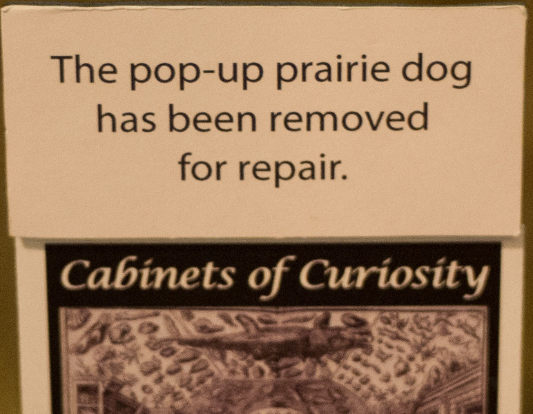 Pop-up Prairie Dog, Out of Service