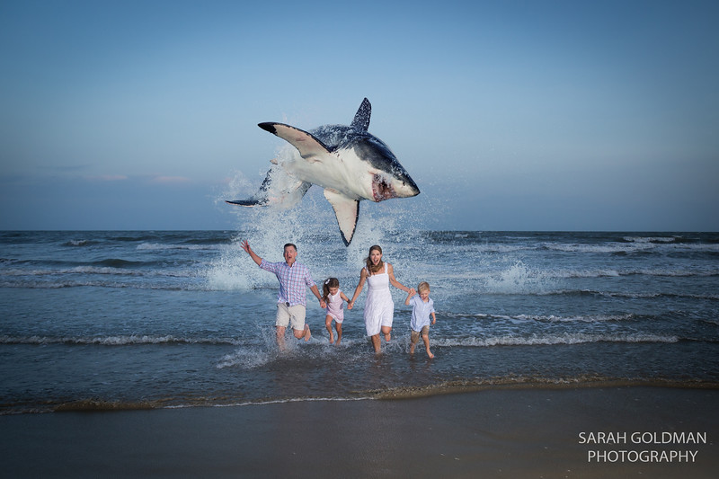 shark jumping family photos.jpg