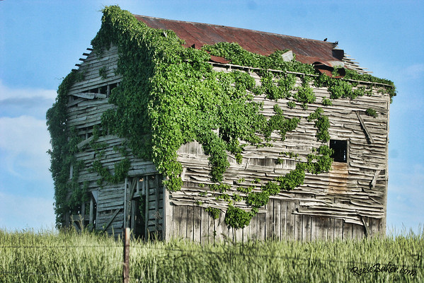 Belt Barn