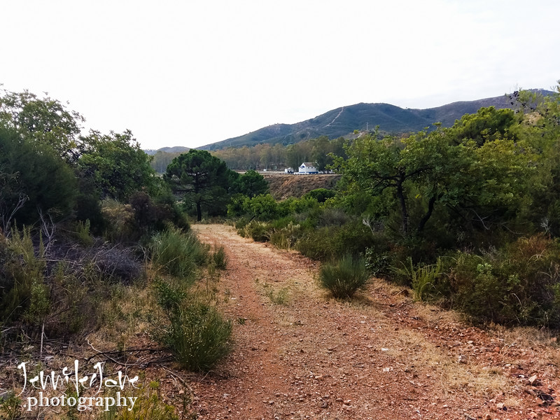 170_walks_with-monty_2016-111941.jpg