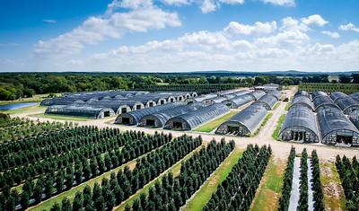 8-11-2020 Purtis Creek Farms Plants