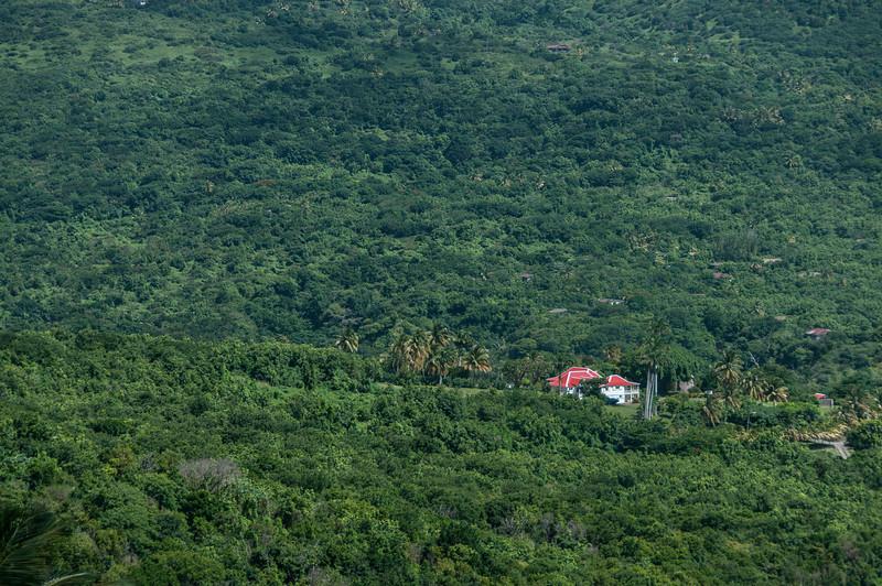 Overlooking view of rainforest in Montserrat