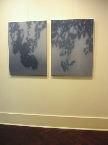 2013 Shadow & Light, FLinders Lane Gallery, Melbourne