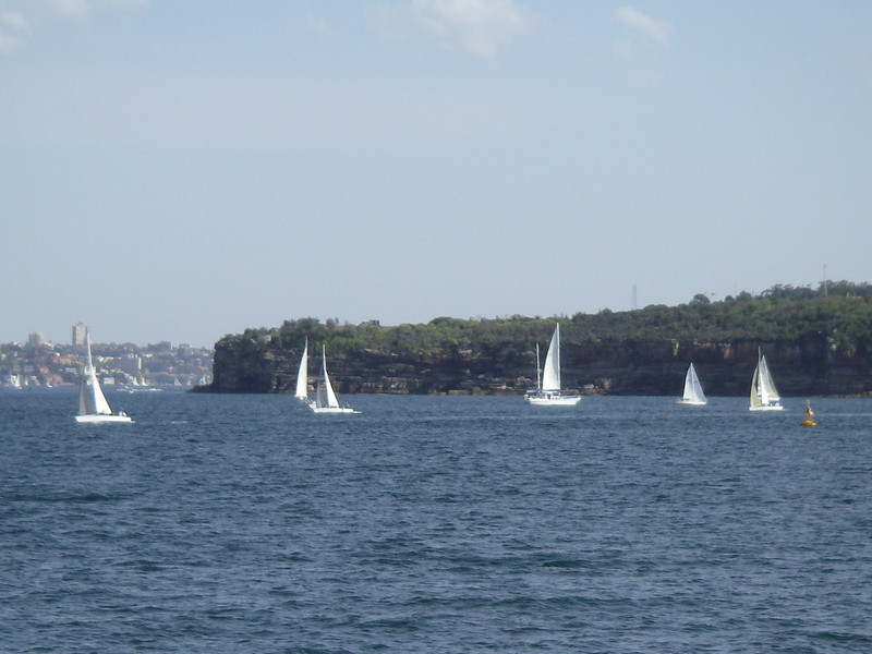 Sydney, Manley 056.JPG