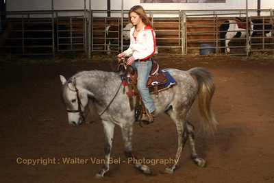 20070203_GipSy Horses