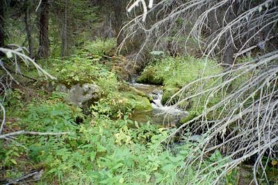Rivers 'n Streams