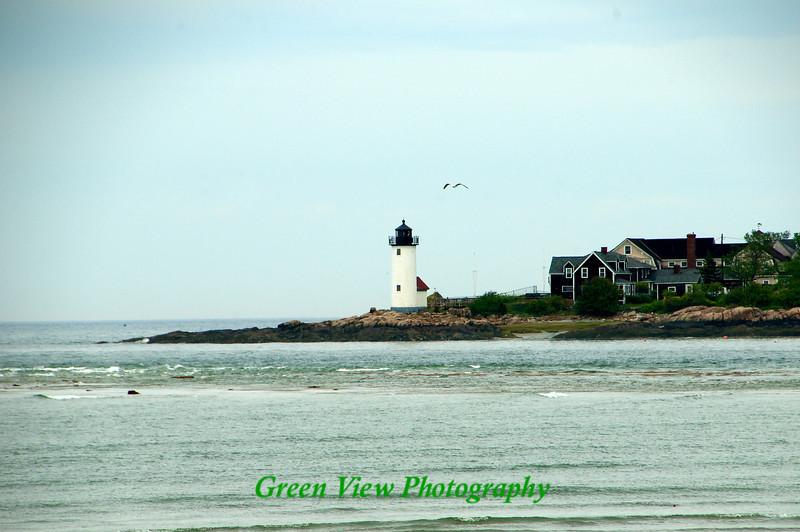 Beauty of Massachusetts, Gloucester