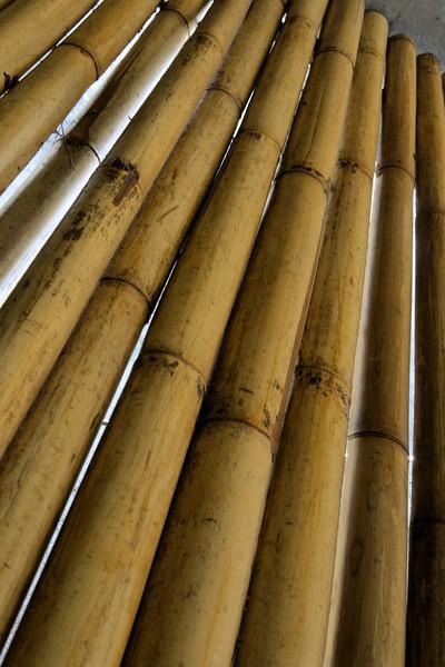 _DG16477-12R Bamboo.JPG